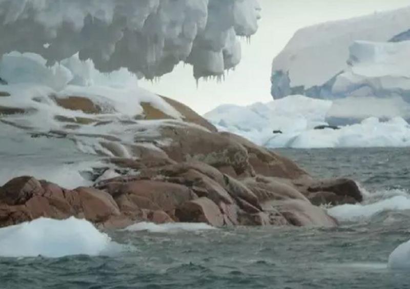 Aparece isla en la Antártida por deshielo