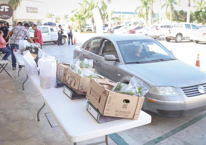"""Impulsan a productores locales con  programa """"Los Cabos Consume Local"""""""