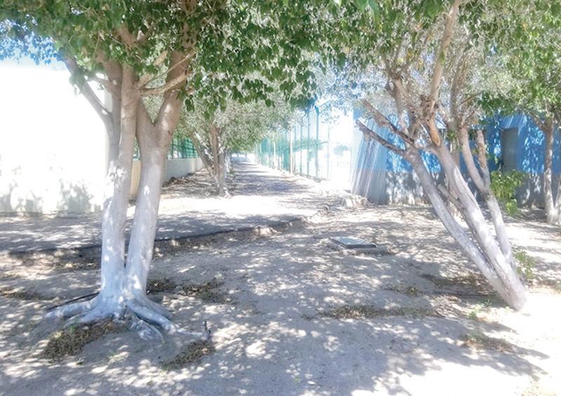 Reconoce administración de la unidad deportiva Nuevo Sol, que sí existe inseguridad en el parque y área deportiva