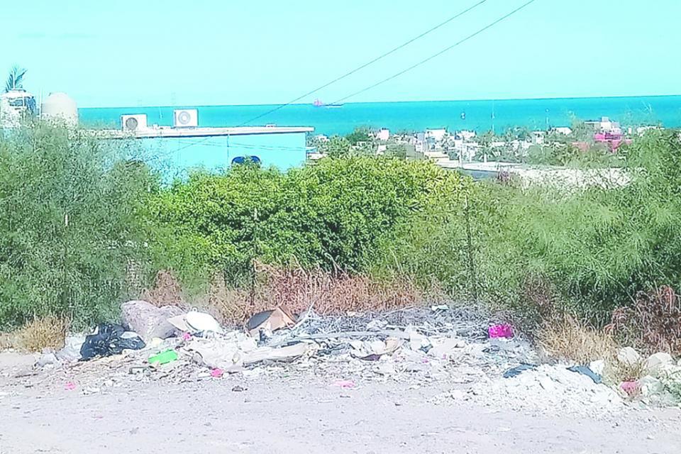 Cansados del foco de infección  vecinos de Colina de la Cruz  piden apoyo a Servicios Públicos para limpiar la zona