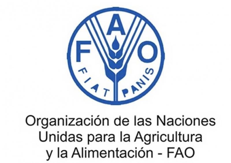 FAO sigue ayudando a países afectados por plagas pese a COVID-19