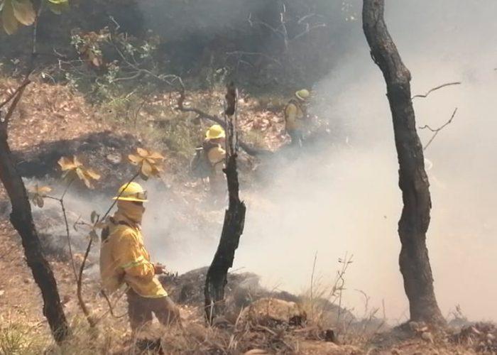Reportan 72 incendios forestales activos: 13 en áreas protegidas
