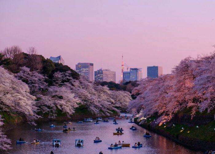 Analizarán aguas residuales en Tokio para confirmar lazo con coronavirus