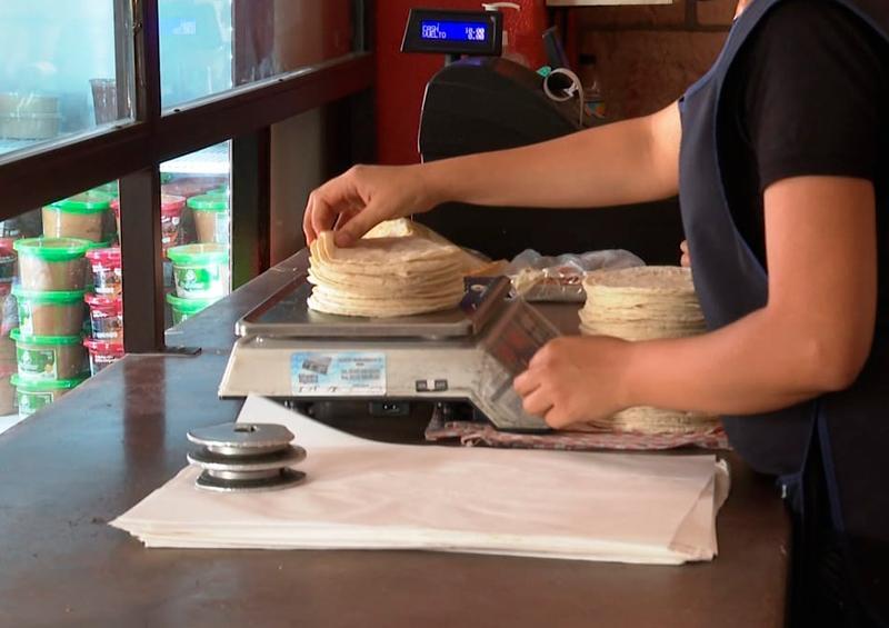 Precio de la tortilla se mantiene, no ha habido aumento alguno