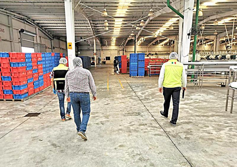 Realiza Coepris verificaciones sanitarias en empresas agrícolas