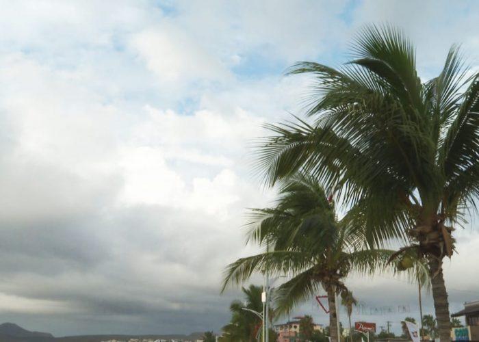 Urge estrategia para hacer frente a huracanes en tiempos de Covid-19