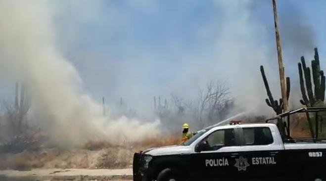 Colonia Calafia registra aparatoso incendio de pastizales