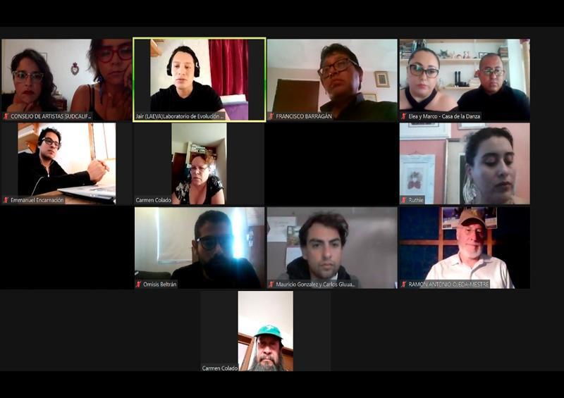 Consejo de Artistas convoca a reunión virtual para el 6 de junio