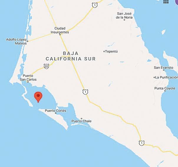 Jovencito de Puerto San Carlos muere mientras buceaba
