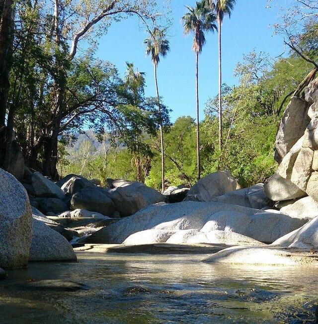 26 años de la Sierra la Laguna como ANP