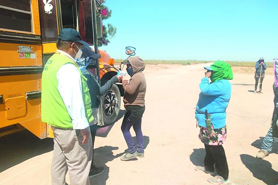 Verifican aplicación de protocolos para prevenir Covid en campos agrícolas