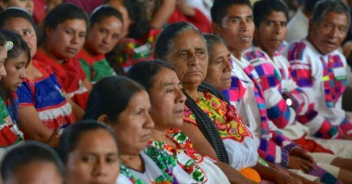 INPI: apoya a indígenas a continuar sus estudios en el país