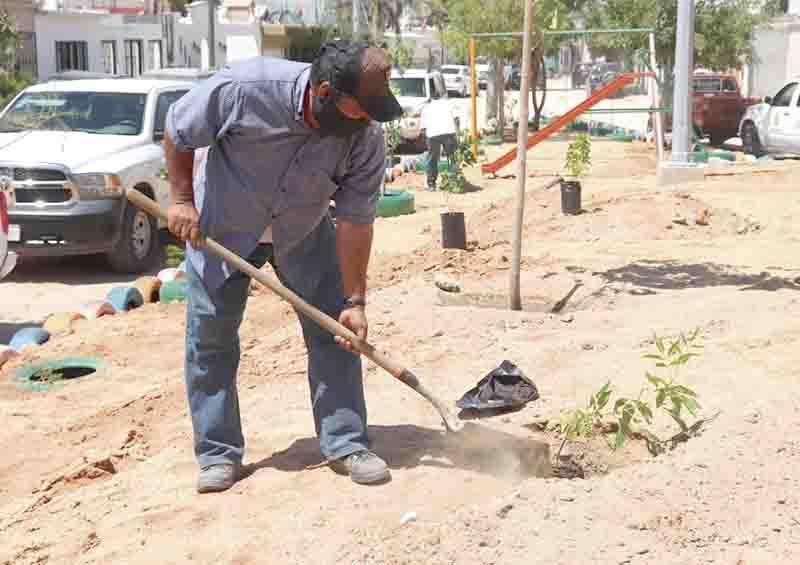 Trabajo conjunto de sociedad y Gobierno para recuperación de áreas verdes