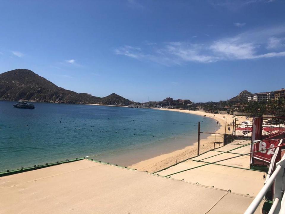 Mejora el ecosistema en Los Cabos debido a baja de actividades