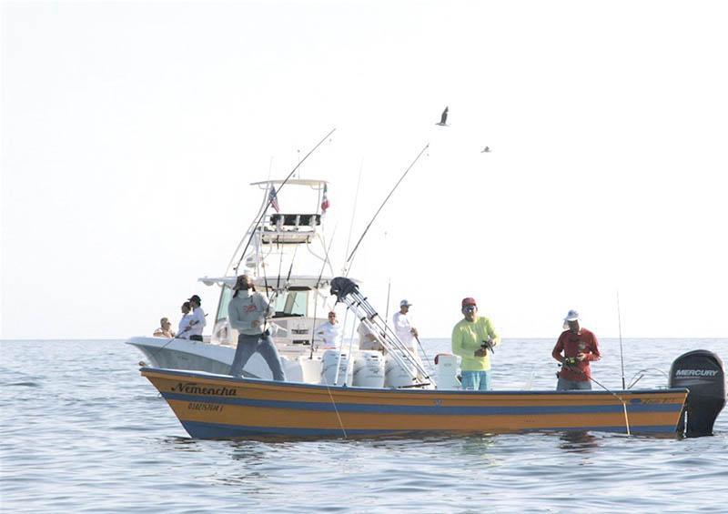 Reactivan pesca deportiva a particulares en BCS