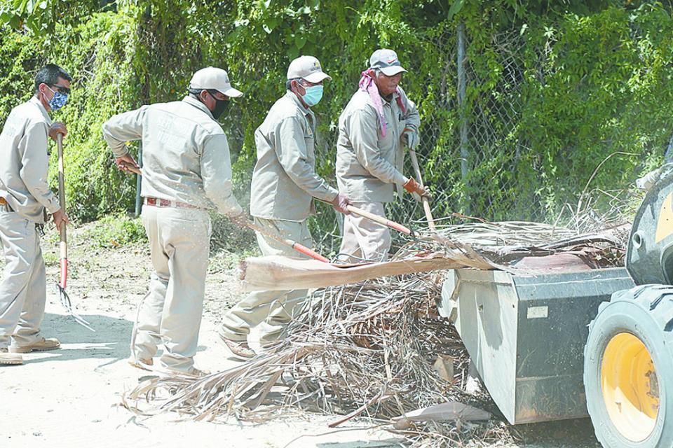 Retiran más de 380 toneladas de ramas y cacharros
