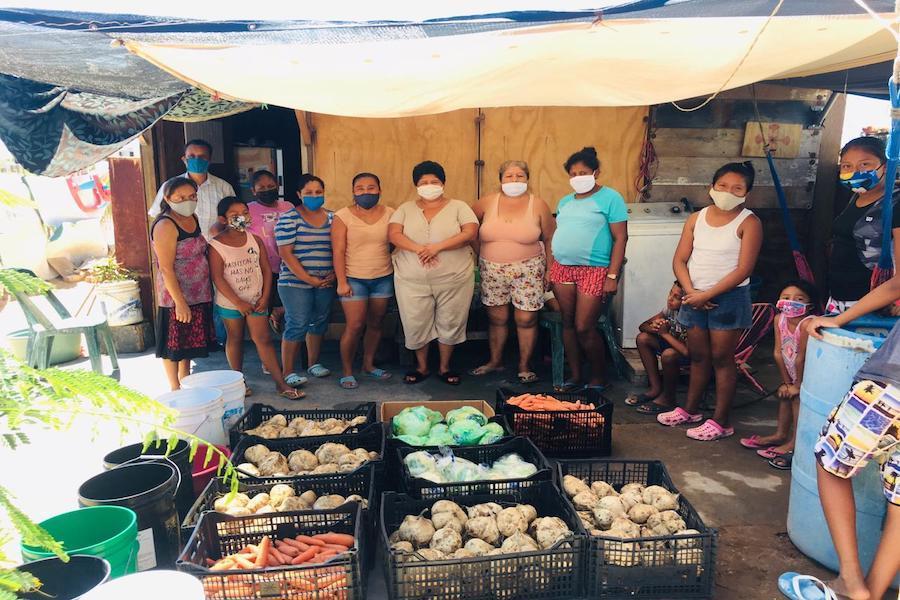 Familias vulnerables beneficiadas con entrega de frutas y verduras de la CROC-BCS