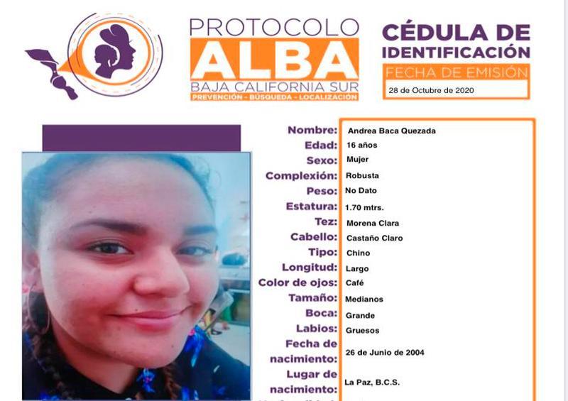 Protocolo Alba