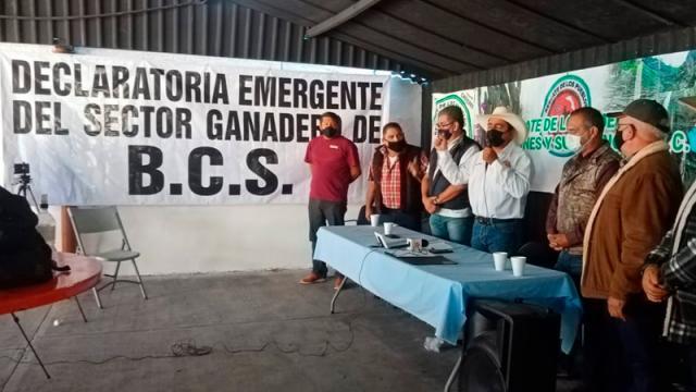 Ganaderos declaran estado de emergencia en el sector primario