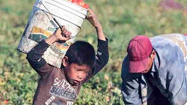 Niños en campo