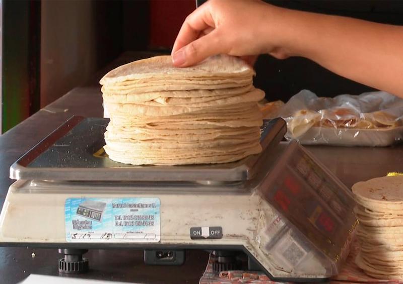 Se prevé un incremento en el precio de la tortilla