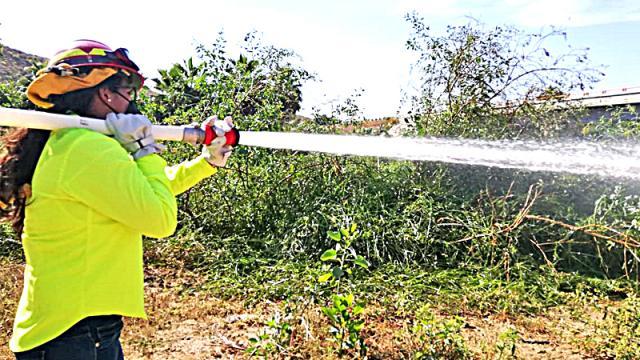 Llaman a prevenir incendios forestales