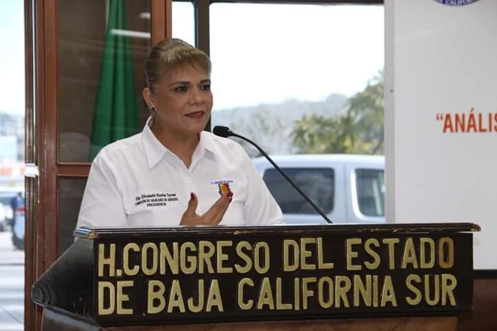 Diputada Elizabeth Rocha