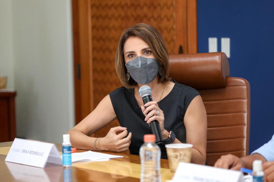 Coordinadora general del Consejo Estatal Ciudadano