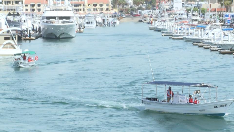 Sector turístico en Los Cabos