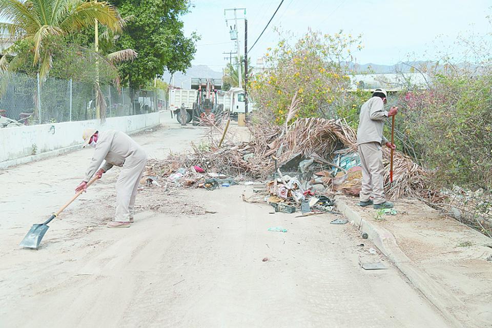 Continúa en Los Cabos retiro de ramas y cacharros