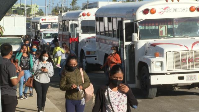 Transporte Público en Los Cabos